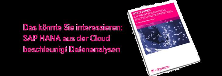 Holen Sie sich unser White Paper zu SAP HANA aus der Cloud!