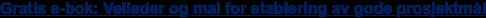 Gratis e-bok: Veileder og mal for etablering av gode prosjektmål