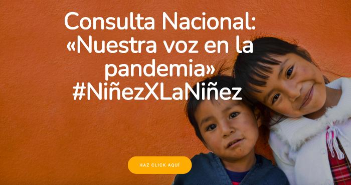 Consulta Nacional: «Nuestra voz en la pandemia»