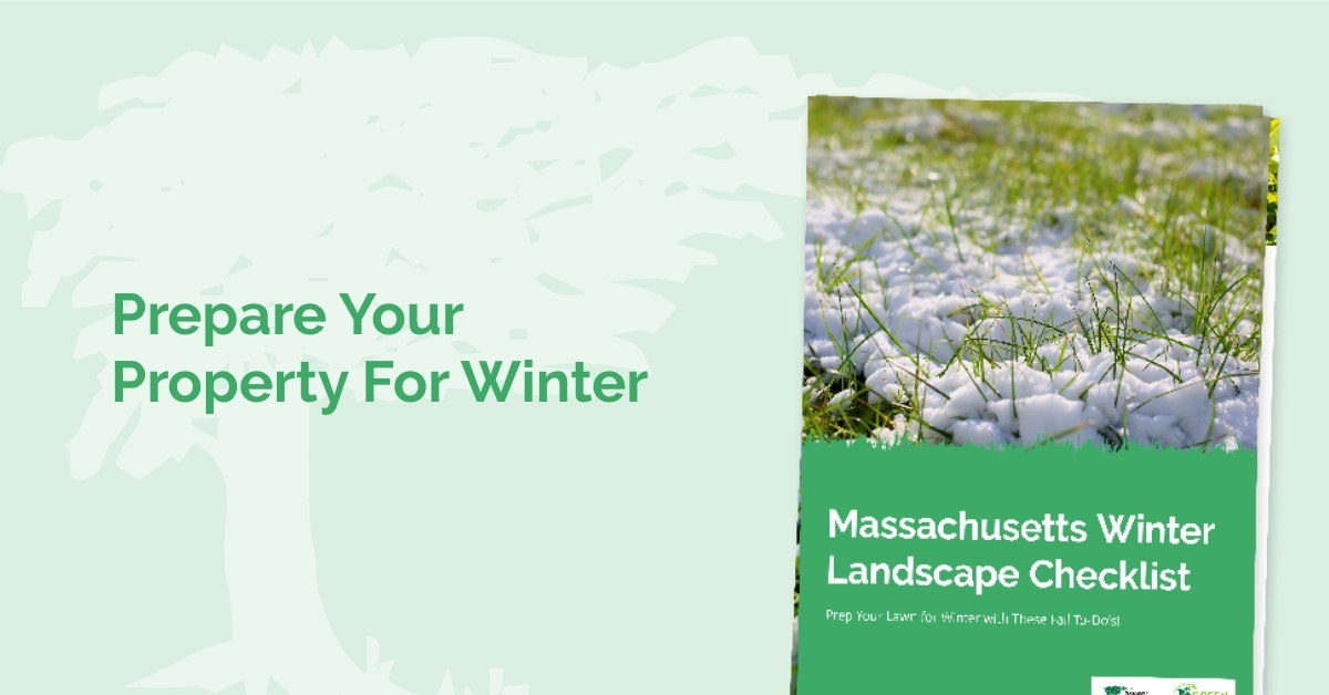 Massachusetts Winter Prep Lawn Care Checklist