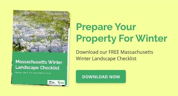 Massachusetts Winter Prep Lawn Care Checklist