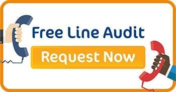 Free telephony line audit