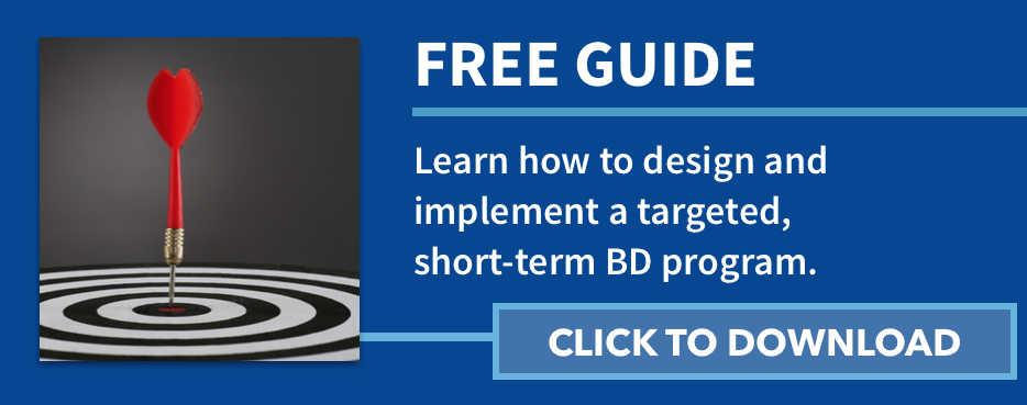 Free Guide: Learn how to design and implement a targeted short-term business development program.