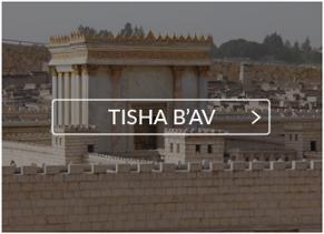 Tisha Bav