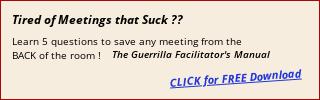meeting facilitator's manual