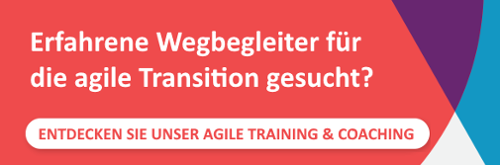 Cegeka Agile Coaching: Erfahrene Wegbegleiter für die agile Transition