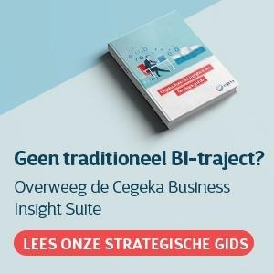 Cegeka Business Insight Suite - Strategic Guide