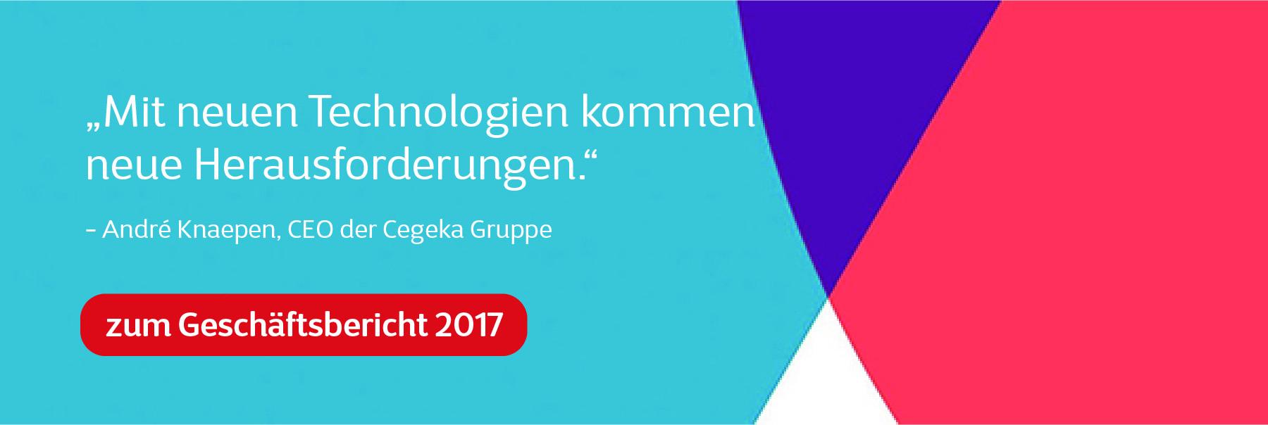 Cegeka Geschäftsbericht 2017