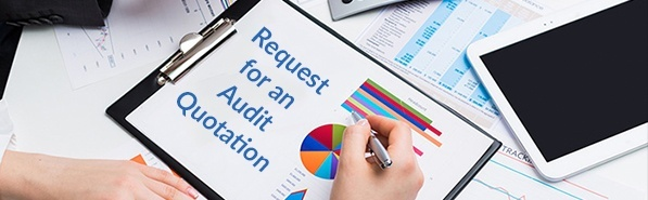 audit quotation free