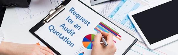 audit quotation free