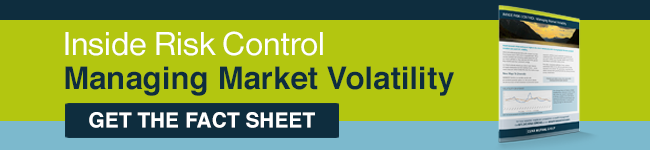 Risk Control: Managing Market Volatility Fact Sheet