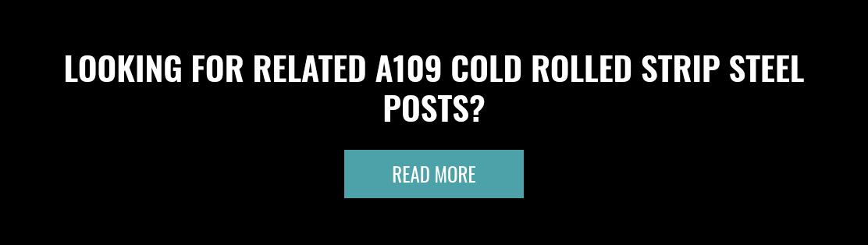 寻找相关的A109冷轧带钢柱?阅读更多