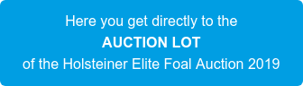 Here you get directly to the AUCTION LOT of the Holsteiner Elite Foal Auction 2019