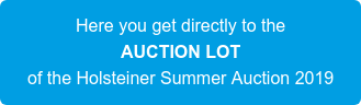 Here you get directly to the AUCTION LOT of the Holsteiner Summer Auction 2019