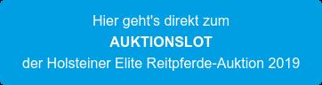 Hier geht's direkt zum AUKTIONSLOT der Holsteiner Elite Reitpferde-Auktion 2019