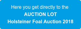 Here you get directly to the  AUCTION LOT  Holsteiner Foal Auction 2018