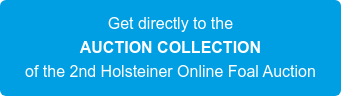 Get directly to the AUCTION COLLECTION of the 2nd Holsteiner Online Foal Auction