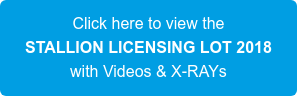 Click here to view the STALLION LICENSING LOT 2018 with Videos & X-RAYs