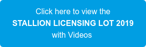 Click here to view the STALLION LICENSING LOT 2019 with Videos