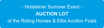- Holsteiner Summer Event - AUCTION LOT of the Riding Horses & Elite Auction Foals