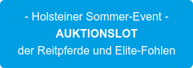 - Holsteiner Sommer-Event - AUKTIONSLOT der Reitpferde und Elite-Fohlen