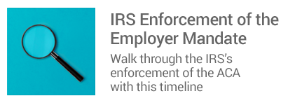IRS Enforcement of  the Employer Mandate