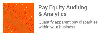 pay-equity-auditing-analytics-payparity-parity-quantify-apparent-disparities-business-irs-audit