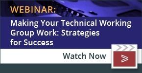 technical working group strategies