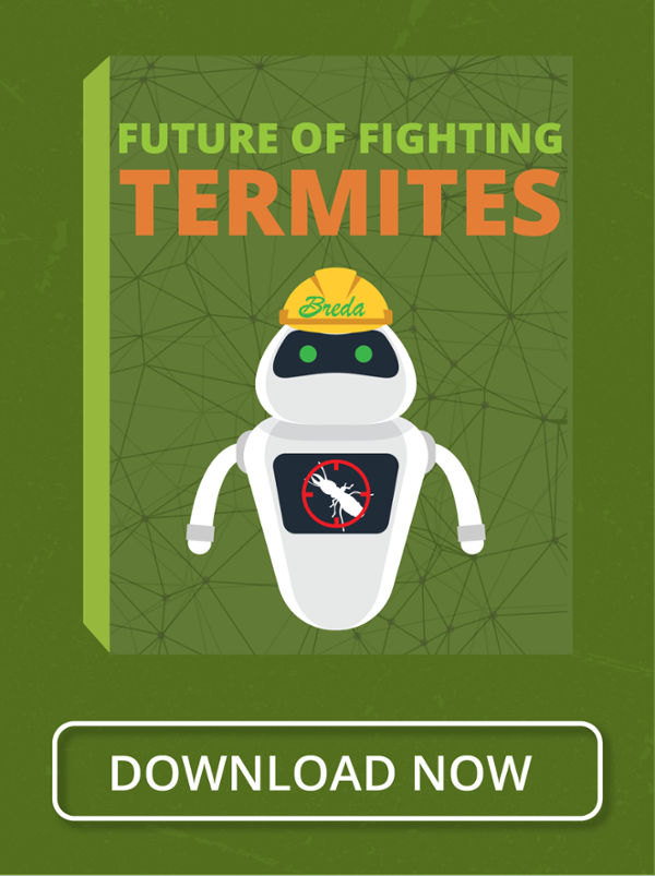 Future of Fighting Termites