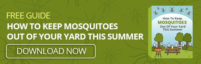 Free Ebook: How To Keep Mosquitoes Out Of Your Yard This Summer