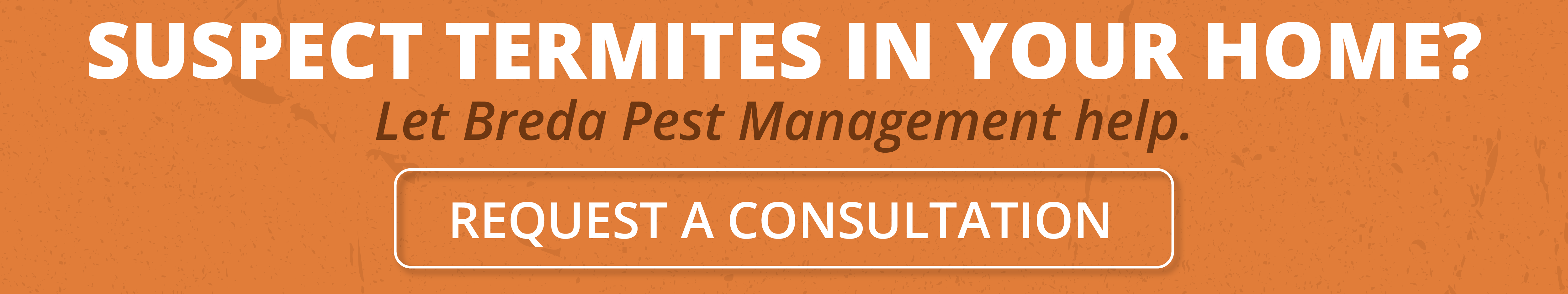 Suspect termites in your home? Let Breda Pest Management help.