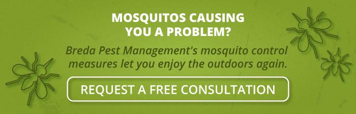 Mosquitos causing you a problem? Breda Pest Management's mosquito control measures let you enjoy the outdoors.