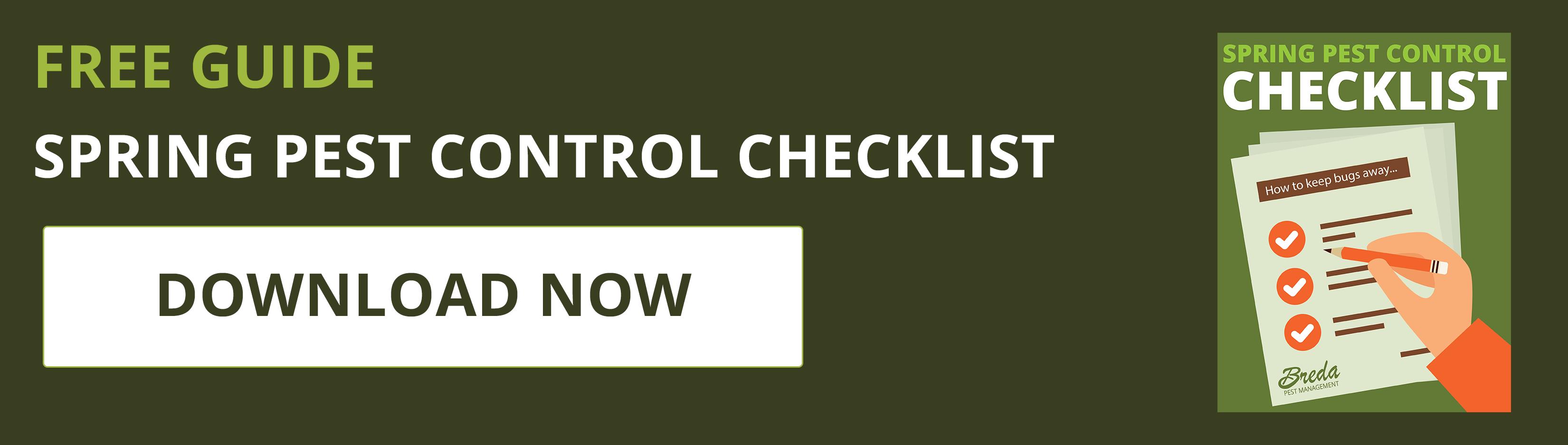 8 steps for do it yourself diy pest control breda pest management solutioingenieria Image collections