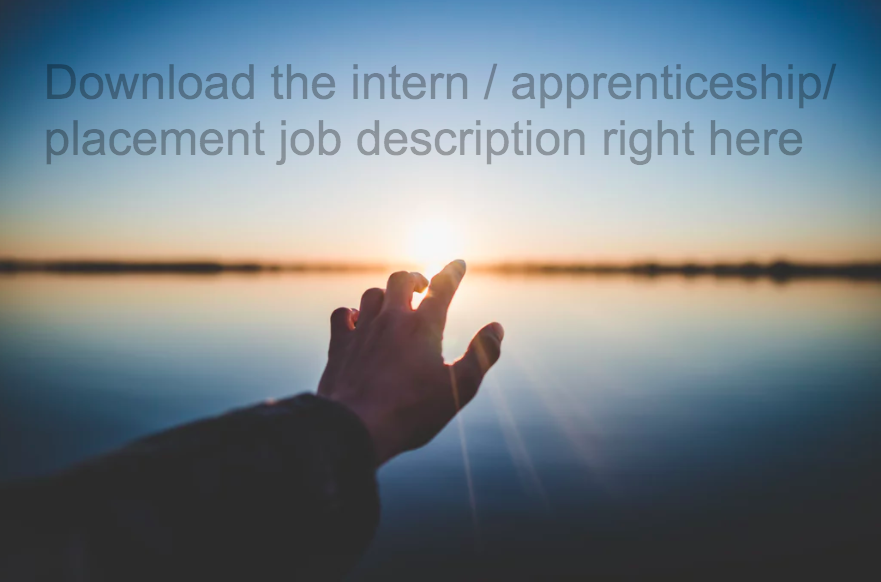intern job description reuse program