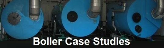 Link to HydroFLOW Case Studies for Boiler Scale Control