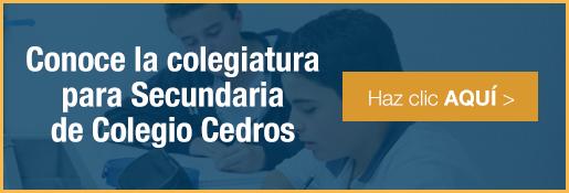 Colegiatura para la secundaria mejor secundaria para niños de colegio cedros - inscripciones 2016-2017