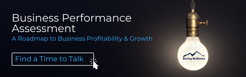 Business Performance Assessment