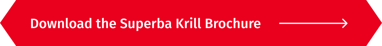 Download the Superba Krill Brochure