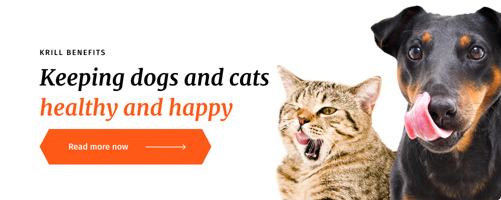 Krill Health Benefits for Pets