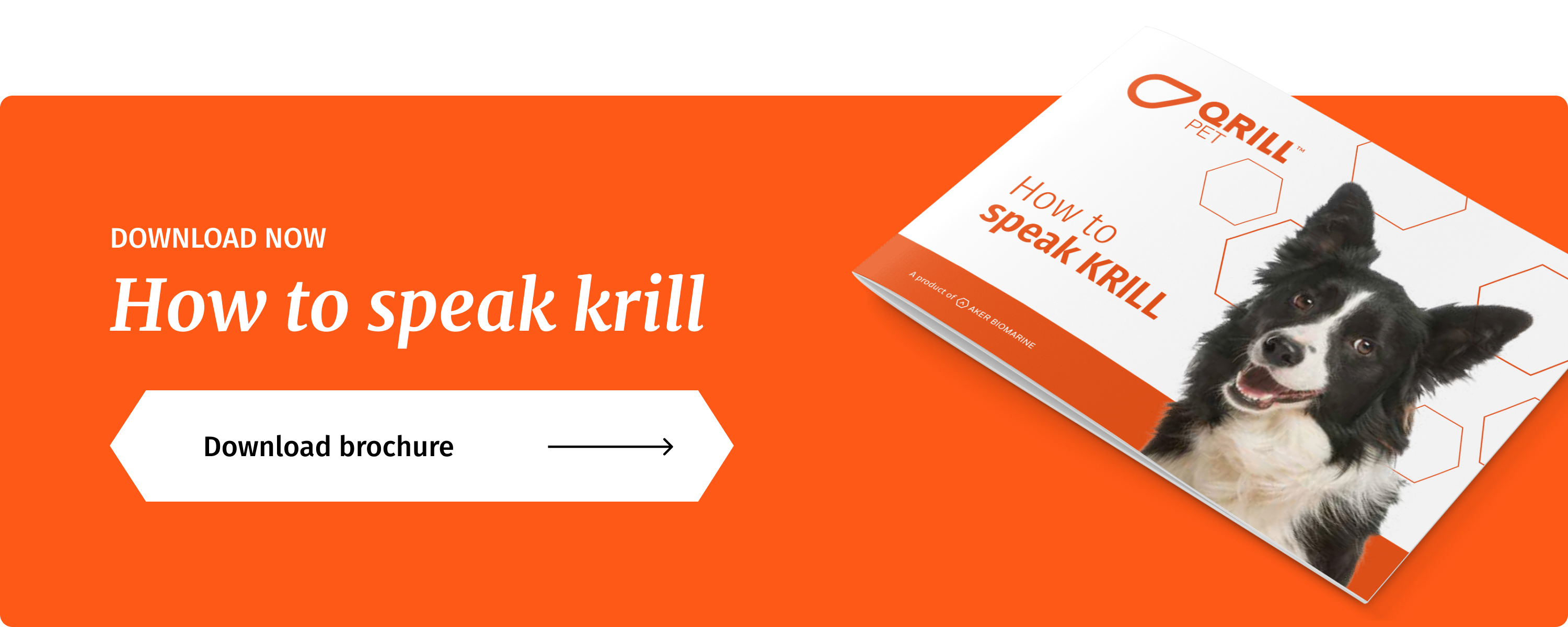 How to speak KRILL Brochure CTA