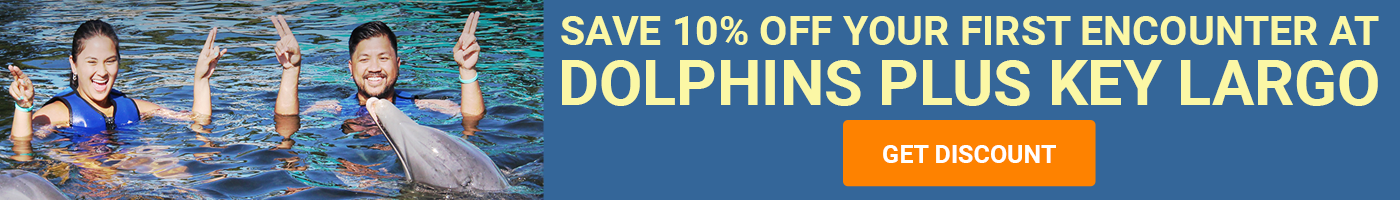 Save 10% Off Your First Dolphin Encounter