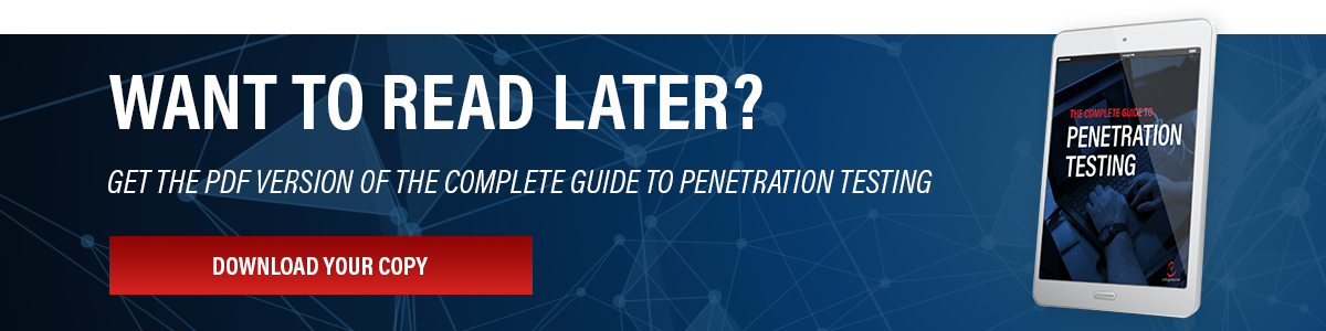 Read Later - The Complete Guide to Penetration Testing