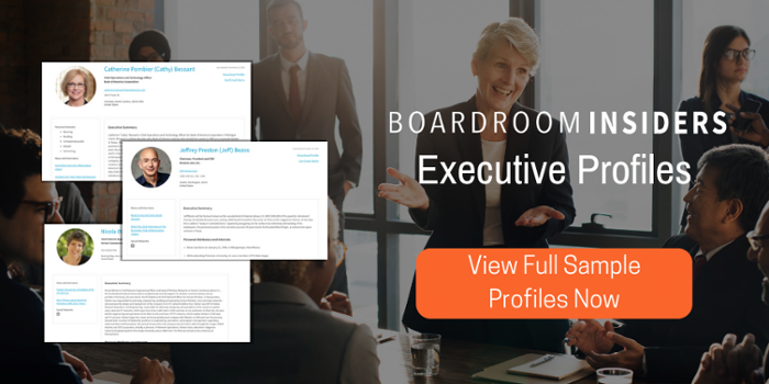 Executive Profile Executive Recruiter