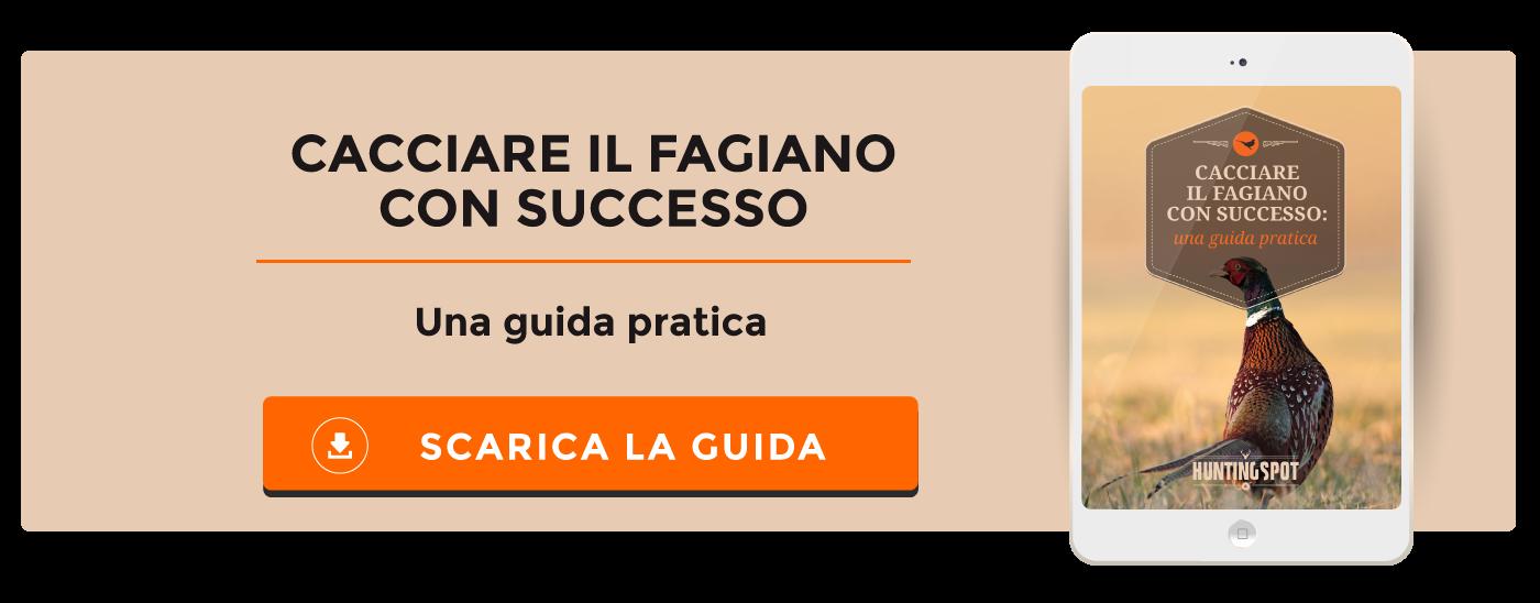 Guida Pratica: Cacciare il Fagiano Con Successo