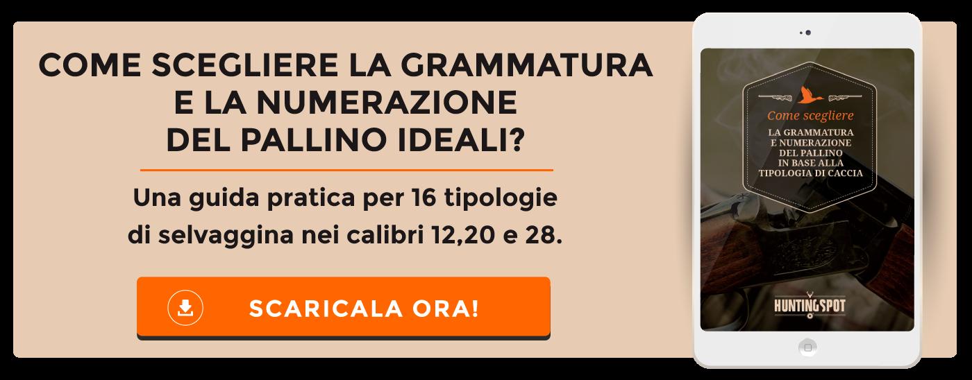 Come scegliere la grammatura e la numerazione del pallino