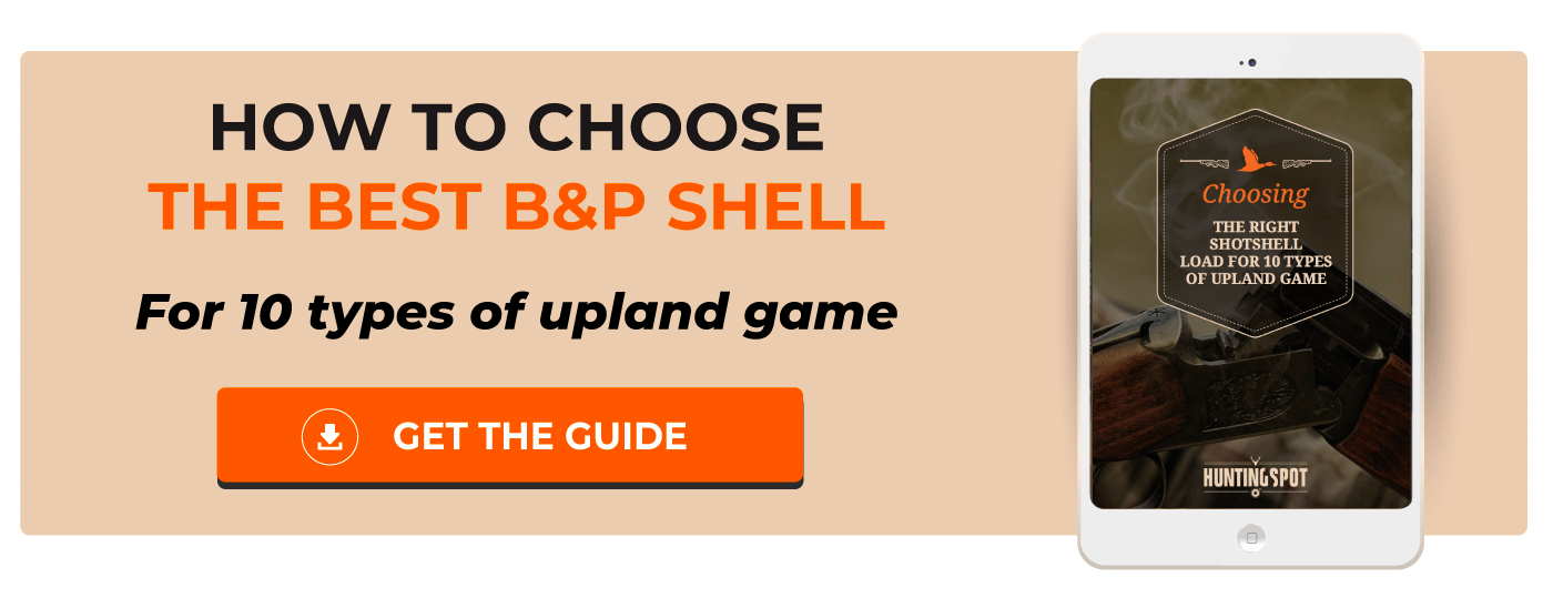 How to choose B&P shells for upland game