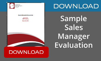 sample sales manager evaluation