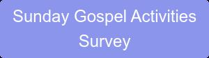 Sunday Gospel Activities Survey