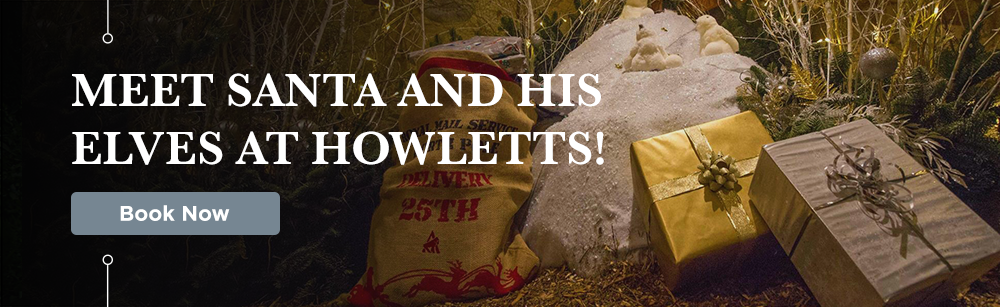 Book Now to Meet Santa at Howletts