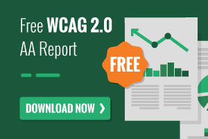 Free WCAG 2.0 AA Report